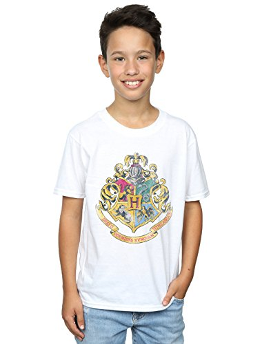 Harry Potter Garçon Hogwarts Distressed Crest T-Shirt