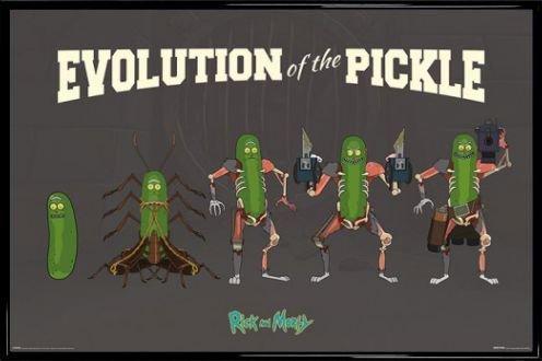 Affiche avec cadre Evolution cornichons Rick & Morty