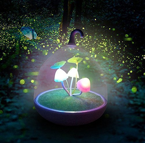 Veilleuse Magic Garden Portative Variable Ultra Lampe Champignon LED Capteur Tactile pour Enfants Bébés Adultes USB Rechargeable Chevet d'Ambiance
