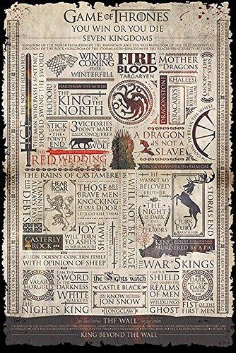 Game of Thrones Poster Infographic (61cm x 91,5cm) + 2 tringles Transparentes avec Suspension