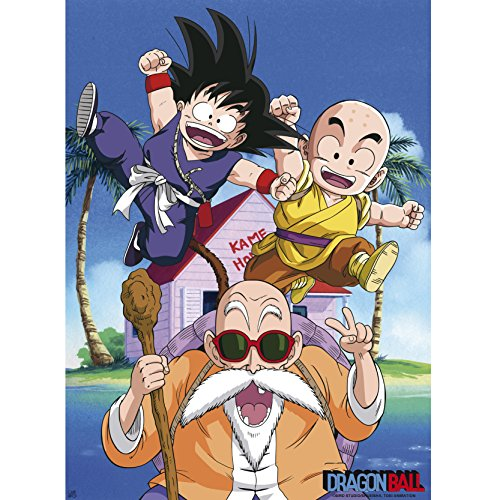 ABYstyle - Dragon Ball - Poster Kame Team (52x38)
